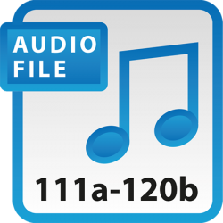 Blue Book Audio Download Files 111a-120b